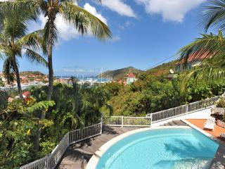 1 Bedroom with Private Pool in Gustavia - Gustavia vacation rentals