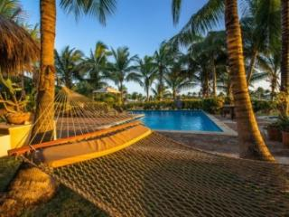 Majestic 6 Bedroom Villa with Courtyard & Swimming Pool in Punta Cana - La Altagracia Province vacation rentals