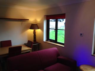 Mold village centre, North Wales, Apartment - Nercwys vacation rentals