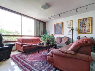 Artist's delux 24h guard /2br apt/parking/Sourasky - Tel Aviv vacation rentals