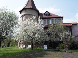 CLOS FROEHN - Zellenberg vacation rentals