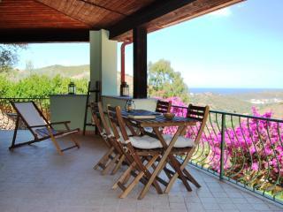 Villa con piscina, terrazza e giardino, vista mare - Budoni vacation rentals