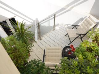 Spacious and modern apartment  in central Nice - Nice vacation rentals