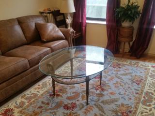 Country Inn in Manhattan! Light & park views! - Yonkers vacation rentals