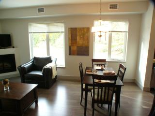 Lake Front Condo - Rossland vacation rentals