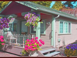 Lauralwood Cottage near beach (Clng Fee inc ) - Birch Bay vacation rentals