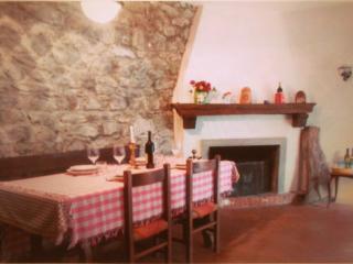 """Collina vicina a Firenze """"LA CASA DI IDA"""" - Rufina vacation rentals"""