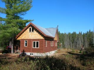 traditional chalet in the forest - Saint-Alexis-des-Monts vacation rentals