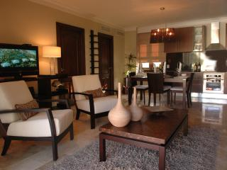 Gold VIP 2 Bedroom New Royal Suites - Puerto Plata vacation rentals