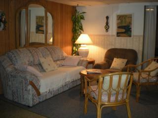 Sleep+Go Gem Lower Unit - Welland - Welland vacation rentals