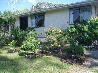 Cottage in semi rural Tauranga - Bay of Plenty vacation rentals