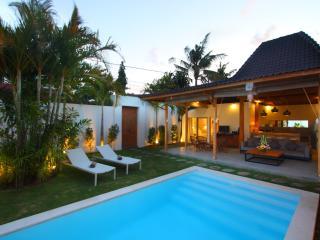 Oberoi brand new 4 bedroom villa with pool - Seminyak vacation rentals