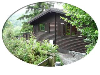 Boltons Tarn Luxury Log Cabin - Ambleside vacation rentals