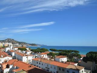 Appartment in the Costa Brava swimming pool - Blanes vacation rentals