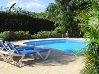 Romantic Oceanview Villa, Daily Maid, Gated Comm - Sosua vacation rentals