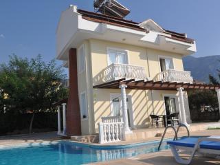 Angel Leyla Villa - Oludeniz vacation rentals