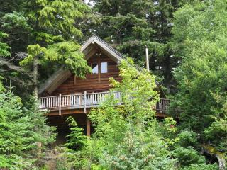 Paradise West Log Cabin & Sauna - Haines vacation rentals