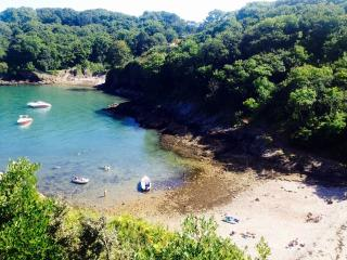 Curlew 5, The Cove located in Brixham, Devon - Brixham vacation rentals