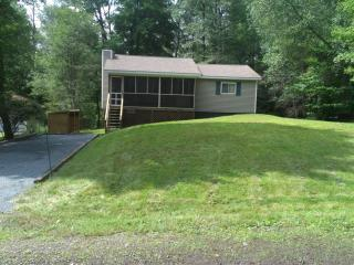 Affordable, WIFI, HDTV, 3 Bed, Fireplace, Location - Poconos vacation rentals