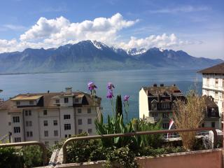 big terrasse zith panoramic lake view - Montreux vacation rentals