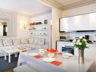 with AC, Le Marais, very comfortable 1BR apartment - Paris vacation rentals