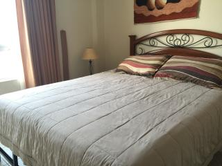 Miraflores 3bd 2.5 bth Wi-FI washer/dryer  WI-FI - Lima vacation rentals