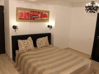 Caesar's Apartments Silver Studio - Bucharest vacation rentals