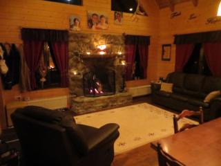 The Little Mountain Cabin - Western Romania vacation rentals