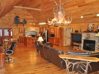 Secluded Serenity - Blue Ridge vacation rentals