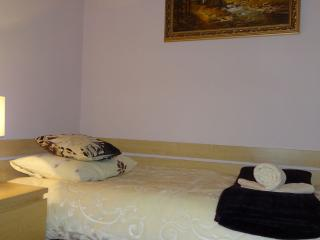 Cracow suburbs apartment - Lesser Poland Province vacation rentals