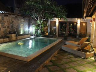 sanur oasis villa - Sanur vacation rentals
