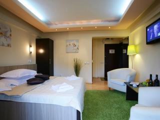 Grand Accommodation - Elegance Studio - Bucharest vacation rentals