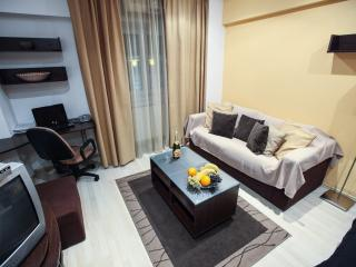 Grand Accommodation - Odeon Studio - Bucharest vacation rentals