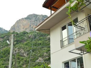 1 Bedroom 1Livingroom Holiday Flats - Mugla Province vacation rentals