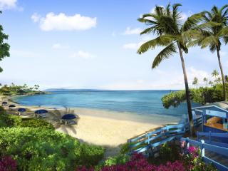 Premier Ocean Grand Residence At Montage Kapalua Bay - Kapalua vacation rentals