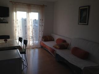 Apartment Emi 2 for 4 with terrace and AC - Novigrad vacation rentals