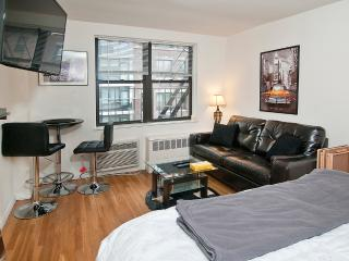 Charming Studio on Park Ave--> BD#31 - Long Island City vacation rentals