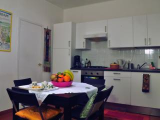 CAVOUR APARTMENT - Florence vacation rentals