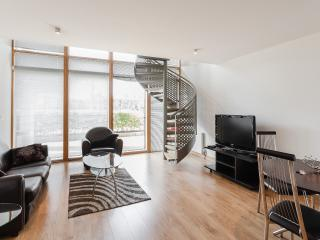 Spencer Dock One Bedroom Apartment - Dublin vacation rentals