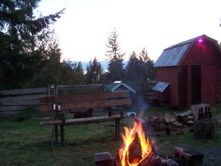 Private Hilltop Cottage  HotTub/PetFriendly - Sooke vacation rentals