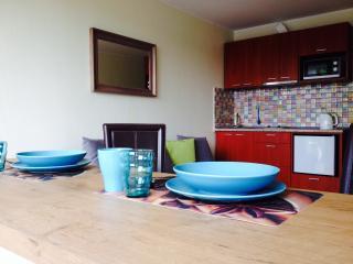 Cozy Central Studio - Druskininkai vacation rentals