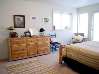 Deer Trail House - Durango vacation rentals