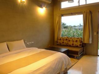 David SamStrong Lite - Taitung vacation rentals