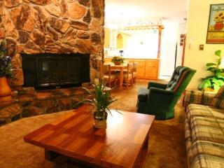 Claim Jumper Townhouse #17 - In Town, Ski In/ Ski Out, On the River, Next to Fishing Ponds, WiFi, King Bed - New Mexico vacation rentals