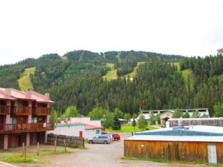 Flagg Mountain Townhouse #6 - In Town, King Bed, Jacuzzi Tub, WiFi, Satellite TV, Washer/Dryer, Pets Considered - New Mexico vacation rentals
