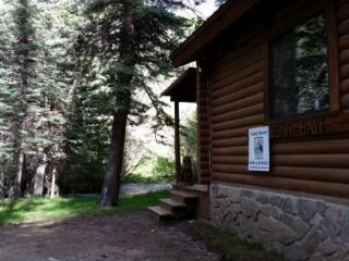 Bear Bait - Log Cabin on the River, Fire Pit, Picnic Area, WiFi, Satellite TV - Red River vacation rentals