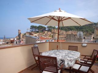 LUXURY DUPLEX APARTMENT TERRACE - Vidreres vacation rentals