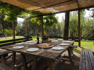 Casa Colonica Podere Chiesina - Bibbiena vacation rentals