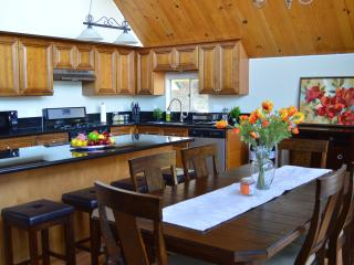 Cabin Retreat Lake Arrowhead - Lake Arrowhead vacation rentals