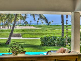 Oceanview Tortuga Bay C7 - Punta Cana vacation rentals